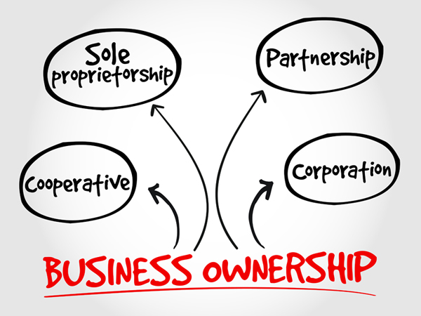 different types of business entities