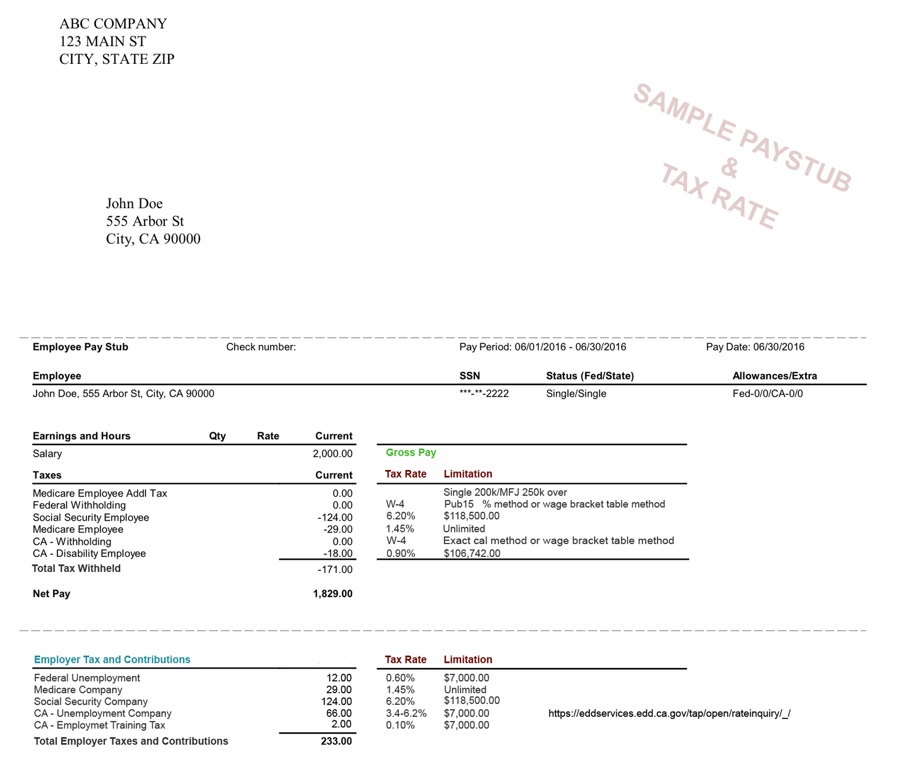paystub sample